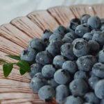 アントシアニンを豊富に含むベリー系果実